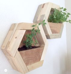 DIY hexagon planters on wall, by featured on Funky Junk Interiors Diy Wood Planters, Diy Wall Planter, Wood Planter Box, Wall Planters, Concrete Planters, Scrap Wood Projects, Garden Projects, Planter Box Plans, Plant Box