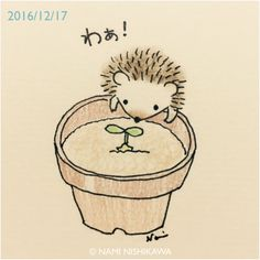 Hedgehog!!!!!!