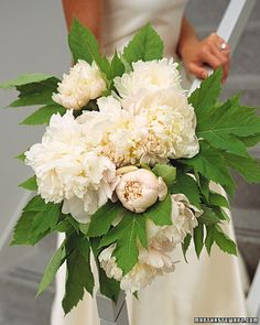White Bouquet,  An abundant cascade of fluffy and fragrant Bowl of Cream peonies is cradled by the flowers' giant, hearty leaves in this arrangement. Love Love!