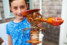 How to Boil and Eat Lobster ~ A visual guide with instructions to boiling and eating fresh New England lobster. ~ SimplyRecipes.com