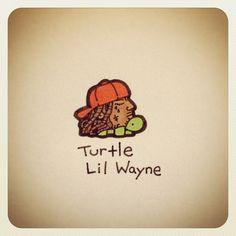 Turtle Lil Wayne #turtleadayjuly - @turtlewayne- #webstagram