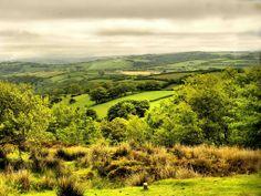 Brendon Hills,Exmoor, Somerset