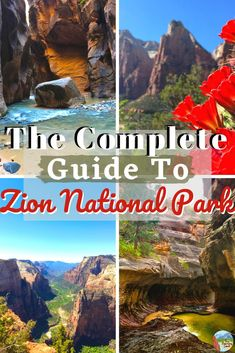 Zion National Park is one of the coolest places on this earth. The tall red sandstone walls that tower over you on each side are a sight your can't miss. You can hike deep within the narrow canyons or hike up to the top to get one of the best views. #zion #nationalpark #utah #guide