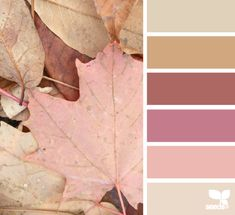 #Farbbberatung #Stilberatung #Farbenreich mit www.farben-reich.com leaf tones