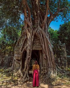Siem Reap City Guide - All About Siem Reap & Angkor Wat, Cambodia Travel Europe Cheap, Travel Usa, Luxury Travel, Siem Reap, Travel Hacks, Travel Packing, Travel Tips, Packing Lists, Budget Travel