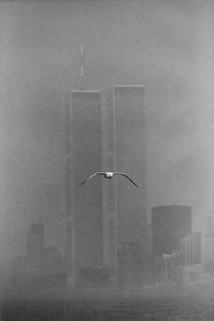 Twin Towers - World Trade Center, photography by Louis Stettner, in New York. - Twin Towers - World Trade Center, photography by. Louis Stettner, World Trade Center Site, Architecture Drawing Art, Paris Images, Art En Ligne, Photo D Art, Oeuvre D'art, Old Photos, Minimalism