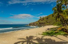 Plage de Grand Anse | Flickr - Photo Sharing!