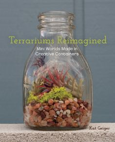 This project is just one of the fabulous projects from Kat Geiger's brand new book, Terrariums Reimagined: Mini Worlds Made in Creative Containers. This full-color craft book that shows you how to make and maintain 24 playful plant environments in unique containers. You can create an arid desert with cacti in an old light fixture. Plant colorful succulents in an unused fish tank. ...