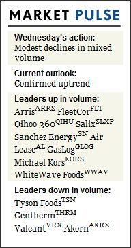 Leaders Flourish Despite Indexes' Mild Retreat