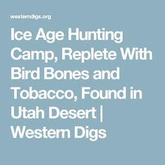 Ice Age Hunting Camp, Replete With Bird Bones and Tobacco, Found in Utah Desert | Western Digs