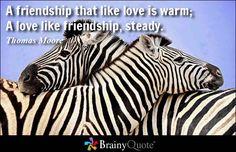 A friendship that like love is warm; A love like friendship, steady. - Thomas Moore