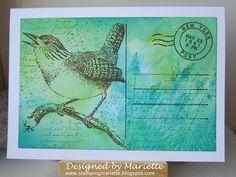 Stamping Mariëtte: Bird post card