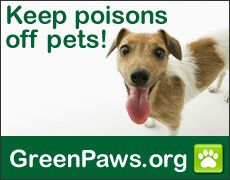 NRDC GreenPaws Flea and Tick Products Directory. Toxicity ratings for flea and tick products.