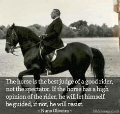 Remember, no horse would EVER allow Frump or anyone else in his whole family to ride! Nor would any DOG allow Frump or anyone else in his whole family to get anywhere near. They hate animals. Tells you all you need to know about how completely degraded they are.
