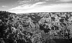 Grand Canyon December Glory In Black And White   Artist Lee Craig   Fine Art Photography-black And White This image of the Grand Canyon, USA, was produced on a cold December day when the temperatures had reached 18 degrees below zero the night before. Not many tourists were taking in the majestic sight that day, which was a shame for them and a good thing for me. This work printed in detailed black and white for the discerning collector. #blackandwhitephotography #grandcanyon #leecraig