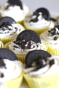 cookies and cream cupcakes - yum! I want to use them as thank you gifts for a panda-themed event at church (black and white!)