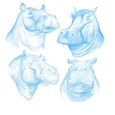 Hippos. This would be a great cross stitch