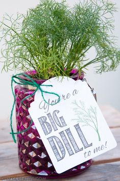 These are the perfect homemade gifts. Make beautiful potted herb DIY gifts with printable tags for Teacher Appreciation gifts or Mother