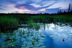 Lac kinogévis Parc Aiguebelle <3  Crédit: Mathieu Dupuis