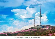 Cherry blossom in spring and seoul tower at namsan mountains, Seoul in South Korea. Seoul, South Korea, Cherry Blossom, Royalty Free Stock Photos, Tower, Korean, Clouds, Mountains, Korea