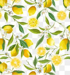 Lovely lemon tree wallpaper taking you back to the lovely scented trees in Sorrento! Yellow lemons on a white background, a vibrant and delicate lemon pattern wallpaper. Pink And Grey Wallpaper, Red Wallpaper, Flower Wallpaper, Pattern Wallpaper, Adhesive Wallpaper, Classic Wallpaper, Kitchen Wallpaper, Illustration Blume, Pattern Illustration
