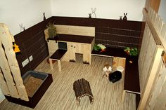 Rabbit needs space to run and play so it is necessary to have a playground for your rabbits. We have curate some ideas of a good rabbit playground here. Bunny Cages, Rabbit Cages, House Rabbit, Pet Rabbit, Rabbit Toys, Rabbit Playground, Playground Design, Indoor Playground, Cage Hamster