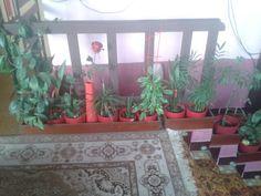 Květinová zóna