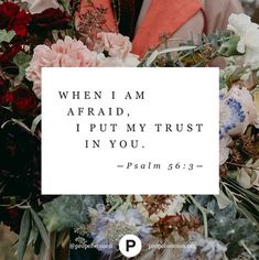 When fear grips your heart, there is no safer place than trusting God with your circumstances. —Christine Caine