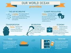 The ocean is such an important part of our every day life! Even if you do not life near a beach, you are receiving the rewards that the ocean gives you! Here are 5 reasons we should care about the ocean! Save Our Oceans, Oceans Of The World, Our World, Un Book, Marine Ecosystem, Ocean Day, Earth Surface, Marine Environment, Marine Conservation