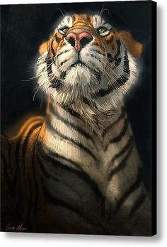 Shop for tiger art from the world's greatest living artists. All tiger artwork ships within 48 hours and includes a money-back guarantee. Choose your favorite tiger designs and purchase them as wall art, home decor, phone cases, tote bags, and more! Big Cats Art, Cat Art, Animal Paintings, Animal Drawings, Art Drawings, Beautiful Cats, Animals Beautiful, Tatoo Tiger, Tiger Artwork