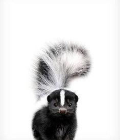 Baby skunk print Nursery animal prints The Crown Prints