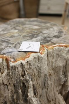 Petrified wood, the perfect height for a side table