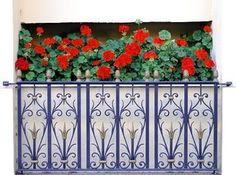 Balkonowe hity - najpopularniejsze kwiaty na balkon i taras