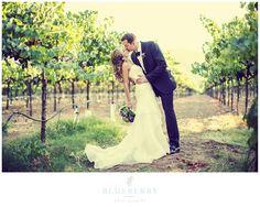 Harvest Inn, St. Helena Wedding Photography. How beautiful are these Napa vineyards?
