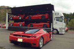 Ferrari F50 GT, FXX, F40 LM(?), 288 GTO Evolutizione, Enzo. Too. Much. Win.