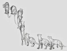 Eric omega illustration in 2019 애니메이션, 동물, 그리기 Animation Reference, Animal Drawings, Art Reference Poses, Animation Art, Animation Sketches, Animal Sketches, Animation Storyboard, Jump Animation, Cat Pose
