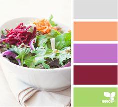 Color Salad: Iced Gray, Sherbert Orange, Violet Onion Purple, Deep Beet Burgundy and Bright Grassy Green