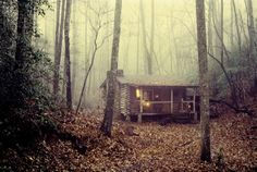"""""""The summer after I finished school I set off into the mountains of North Carolina to build a log cabin, armed with a few books, and hand tools, but no experiance or skills. I set up my tent and expected it to take six weeks to build. Six months later I still hadn't finished the chimney or started the roof. But this is what it looked like on a misty November morning a few years later.  I lived here for about eight years, and owned it for about fifteen years after I built it in 1976 with…"""