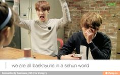 """Baekhyun embarrassed by Sehun's  display of """"trying not to be obvious but being as obvious as a stain of a white shirt"""""""