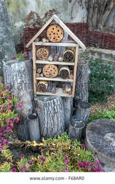 Insect hotel for different bugs in the garden Stock Photo