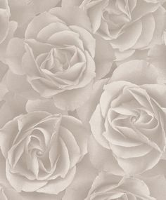 Wellness wallpaper hochkant  Rasch Tapete Crispy Paper grün Pflanzen 524901 Vliestapete kaufen ...