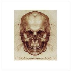 New Tattoo Idea - Leonardo Da Vinci Skull drawing Skull Anatomy, Anatomy Art, Human Figure Drawing, Figure Drawing Reference, Anatomy Reference, Michelangelo, Skull Sketch, Drawing Sketches, Drawings