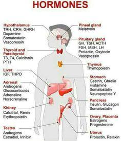 #nursing #hormones