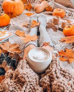 Autumn Cozy Fall Pictures, Fall Photos, Autumn Cozy, Fall Winter, Thanksgiving Wallpaper, Fall Wallpaper, Halloween Wallpaper, Autumn Photography, Hello Autumn