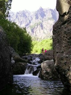 Lake Palma, Canaries, Spain #yoamocanarias