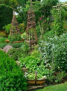 Nice Veggie Garden!!