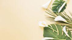 White Studio Background, Lilac Background, Slide Background, Purple Backgrounds, Flower Backgrounds, Lights Background, Paper Background, Wallpaper Powerpoint, Powerpoint Background Design