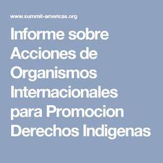 Informe sobre Acciones de Organismos Internacionales para Promocion Derechos Indigenas