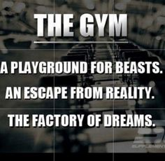 Cross Training for Fitness and Fatloss Workout Memes, Gym Memes, Gym Humor, Gym Workouts, Fitness Studio Motivation, Fitness Goals, Workout Motivation, Lifting Motivation, Body Fitness
