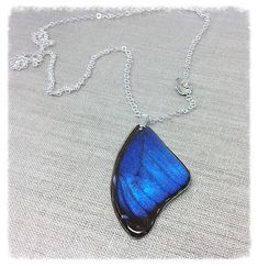 Hey, I found this really awesome Etsy listing at https://www.etsy.com/listing/476513741/real-butterfly-wing-jewelry-sterling